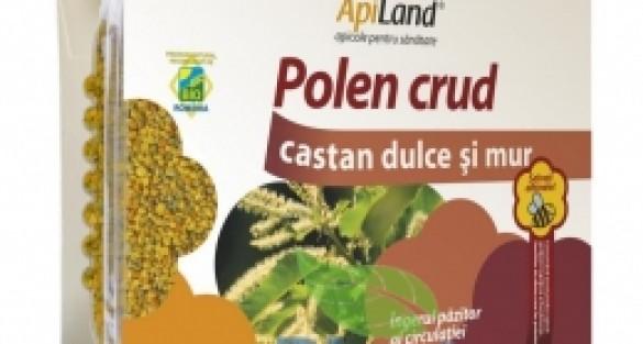 Polen crud de miere de albine