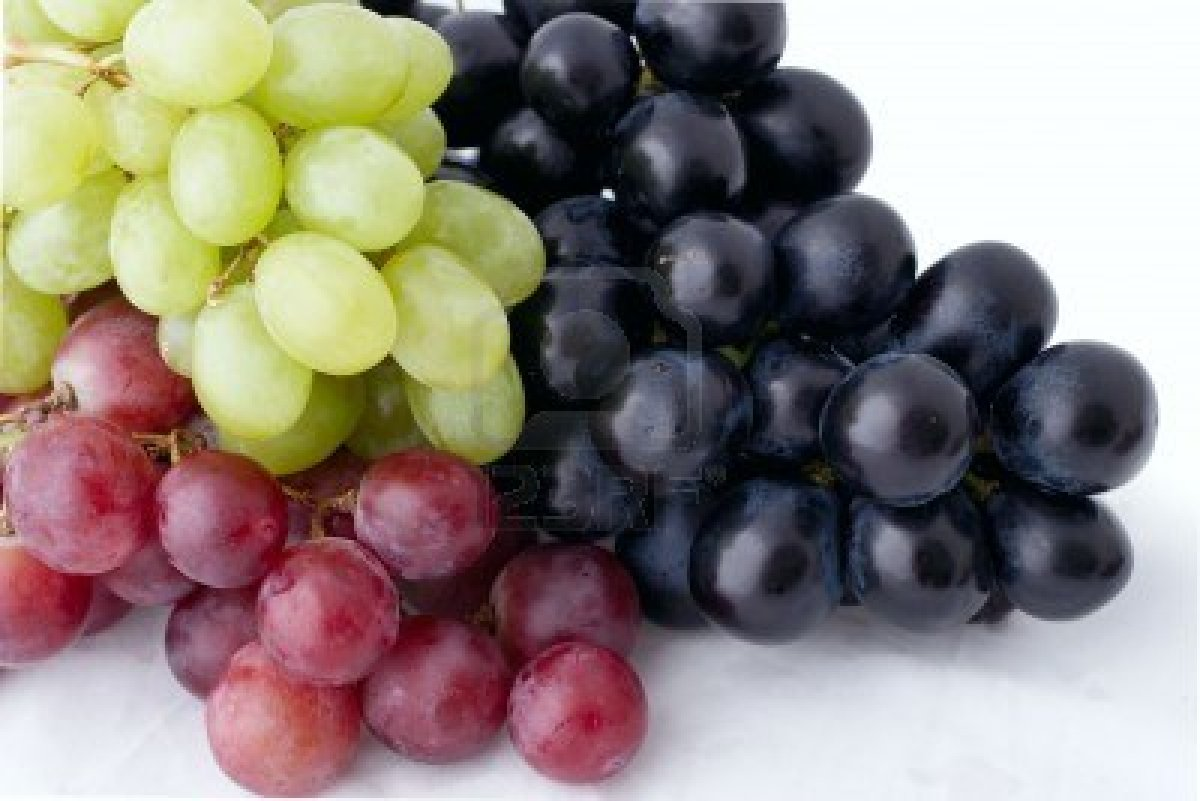 777201-bunch-of-isolated-dark-green-and-red-grapes-on-white-background